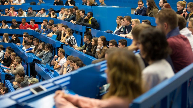 Unser Institut bietet mehr als 30 Lehrveranstaltungen an.